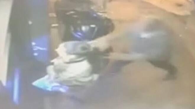 Napoli ragazza rapinata e trascinata per una decina di metri